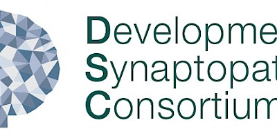 Developmental Synaptopathies Research Consortium